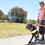 Jayne and Guide Dog Cali in harness