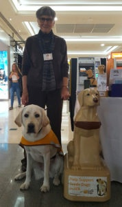 Guide Dog Sponsor Thelma with trainee Guide Dog and Model Collection Dog