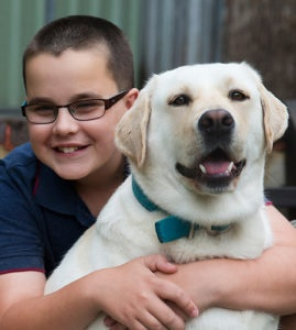 Yellow labrador and young boy share a cuddle