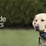 Grace with Autism Assistance Dog Koha