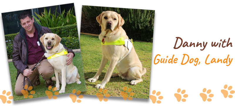 Montage of Danny with Guide Dog Landy
