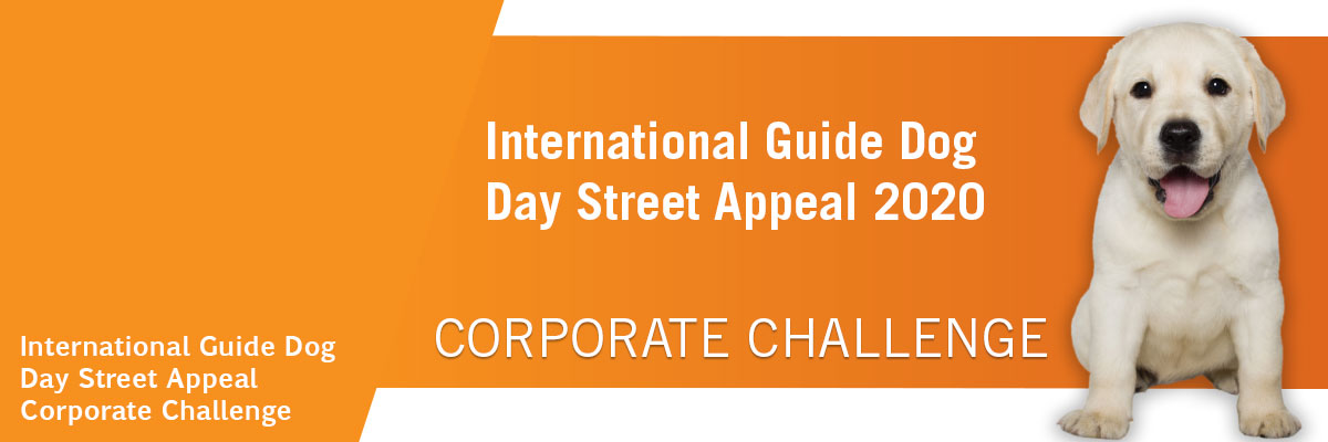 International Guide Dog Day Street Appeal Corporate Challenge 2020