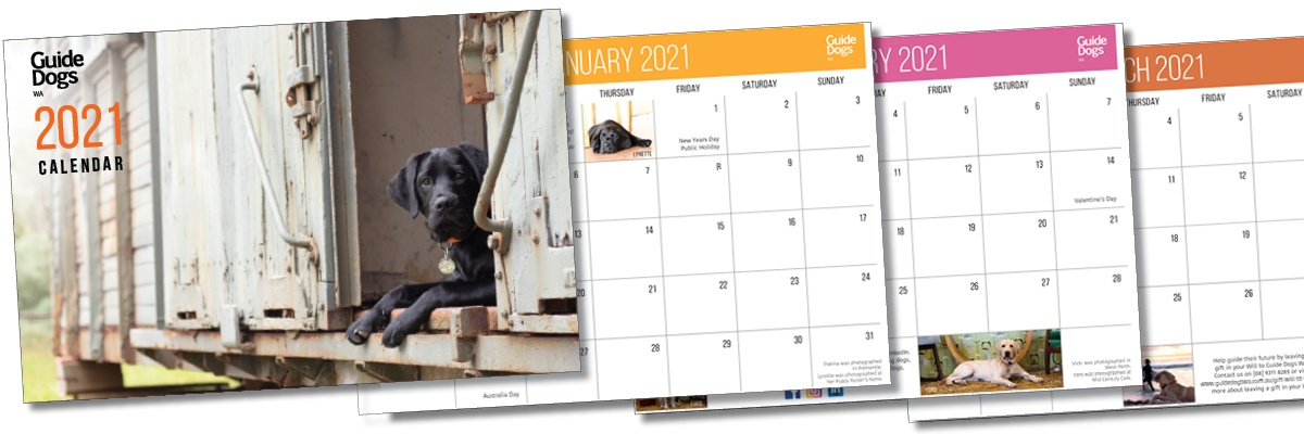 3 images showing the printed Guide Dogs WA 2021 Calendar - Cover and months