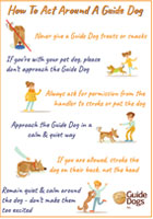 How to Act Around a Guide Dog Poster