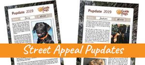 Street Appeal Pupdates