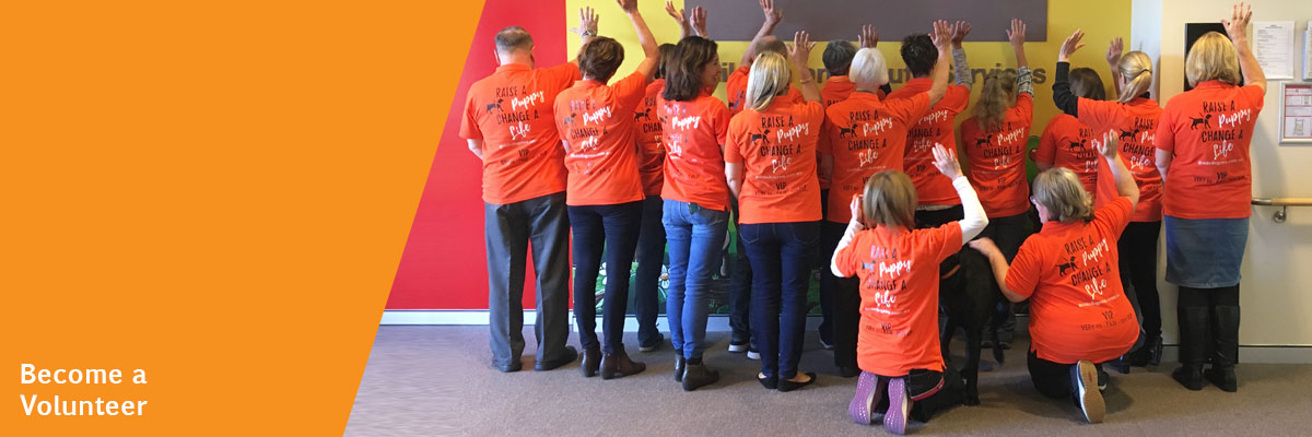 Group of volunteers in orange t-shirts with their backs to the camera