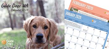 Calendar Montage