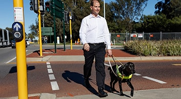 Guide Dog Sundae leads owner Eric across a pedestrian crossing