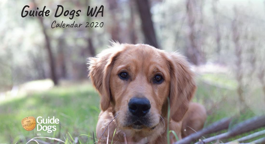 Guide Dogs WA Calendar 2020
