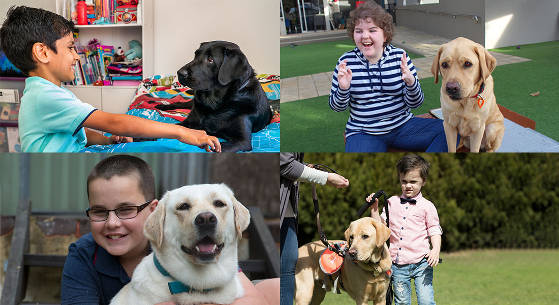 Autism Assistance Dog Stories