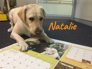 Natalie proofing the calendar