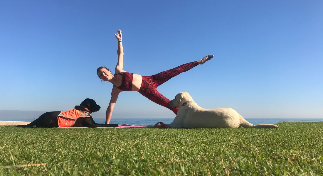 Woman doing yoga with two labradors
