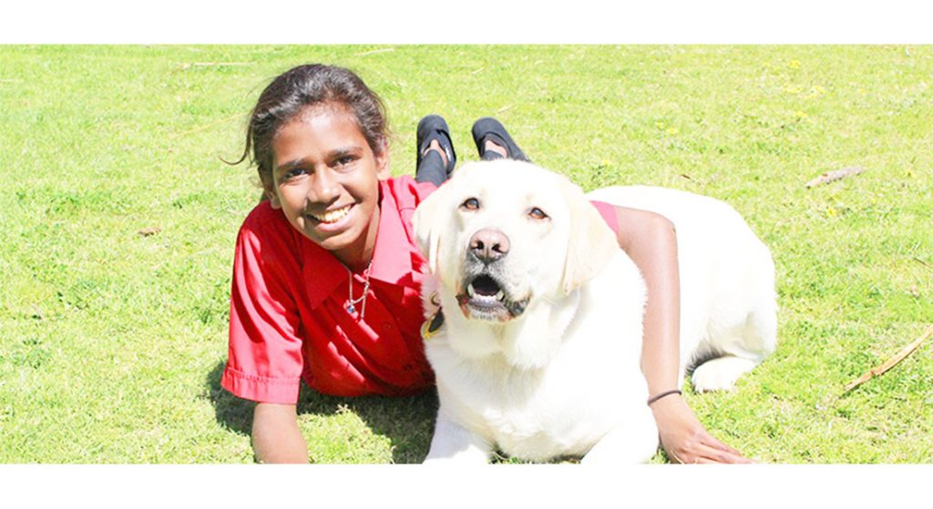 Companion Dog Harry with student
