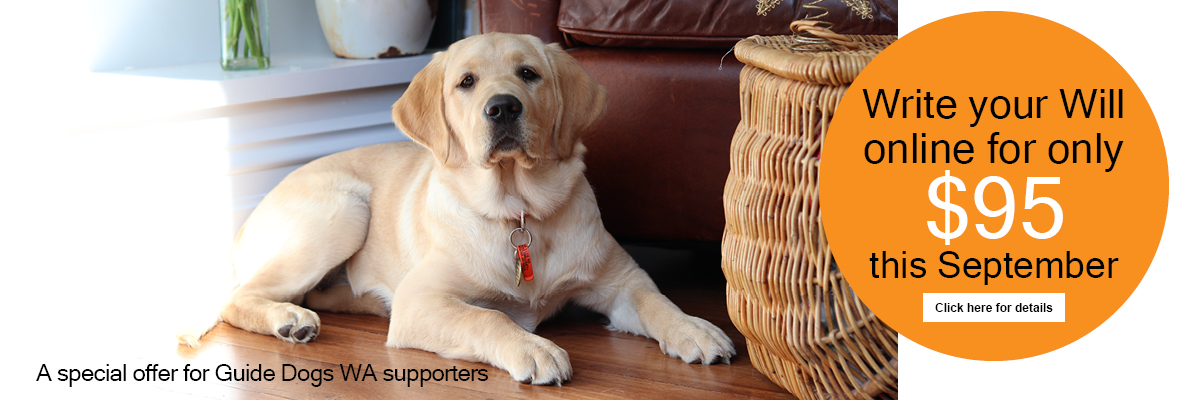 Guide Dog puppy sitting on the floor in a lounge room. Text: Write your will online for $95 this September. Click here