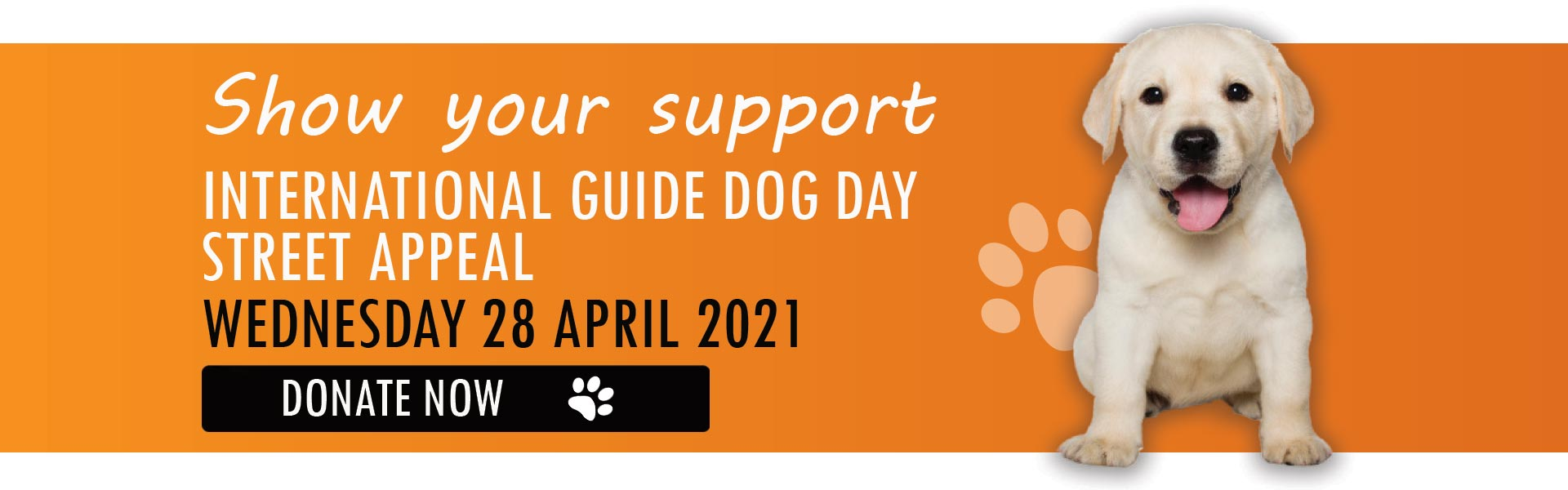 Yellow labrador puppy faces the camera. Text reads: Show your support. International Guide Dog Day Street Appeal, Wednesday 28 April 2021. Donate Now