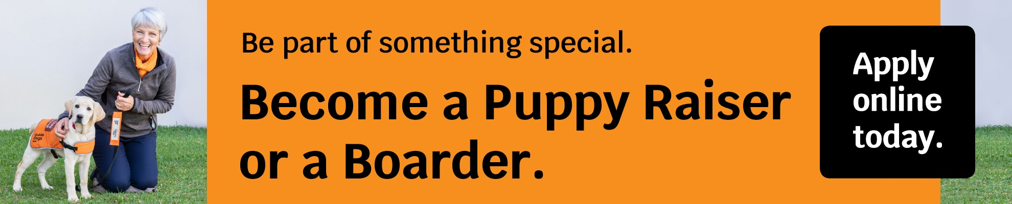 Image of volunteer with a dog in training outside on the grass. Text reads: Be part of something special. Become a Puppy Raiser or a Boarder. Apply online today.