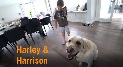 Autism Assistance Dog Harley and his human, Harrison