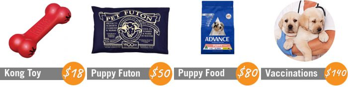 Montage featuring Kong toy, Pet Futon bed, Advance Puppy Food and two yellow labrador puppies